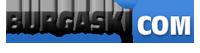 Бургаски видео портал - лого