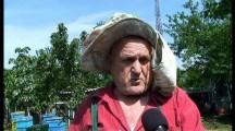 Медопроизводителите в Бургас изправени на нокти