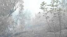 Голям пожар в Бургас